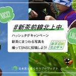 MAFF_JAPANのサムネイル画像