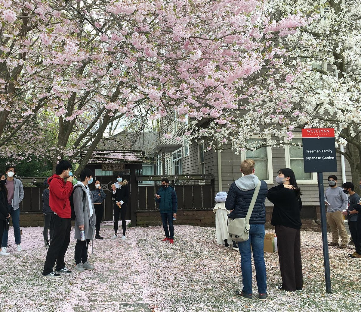 "test Twitter Media - Wesleyan's Japanese community recently gathered outside the College of East Asian Studies to celebrate Ohanami, or ""flower viewing."" In early spring, three beautiful sakura—or cherry blossom trees—bloom near the College's Japanese Garden. 🌸  https://t.co/j0CnMxjR43 https://t.co/oSclDcPgAp"