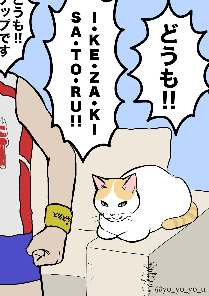 YouTubeで叫ぶサンシャイン池崎に対して?全く動じない猫!