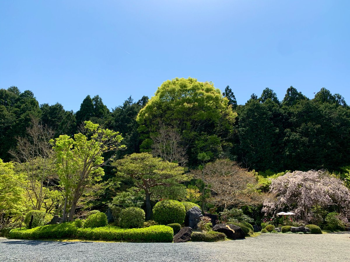 HIRAMEKI_002 photo