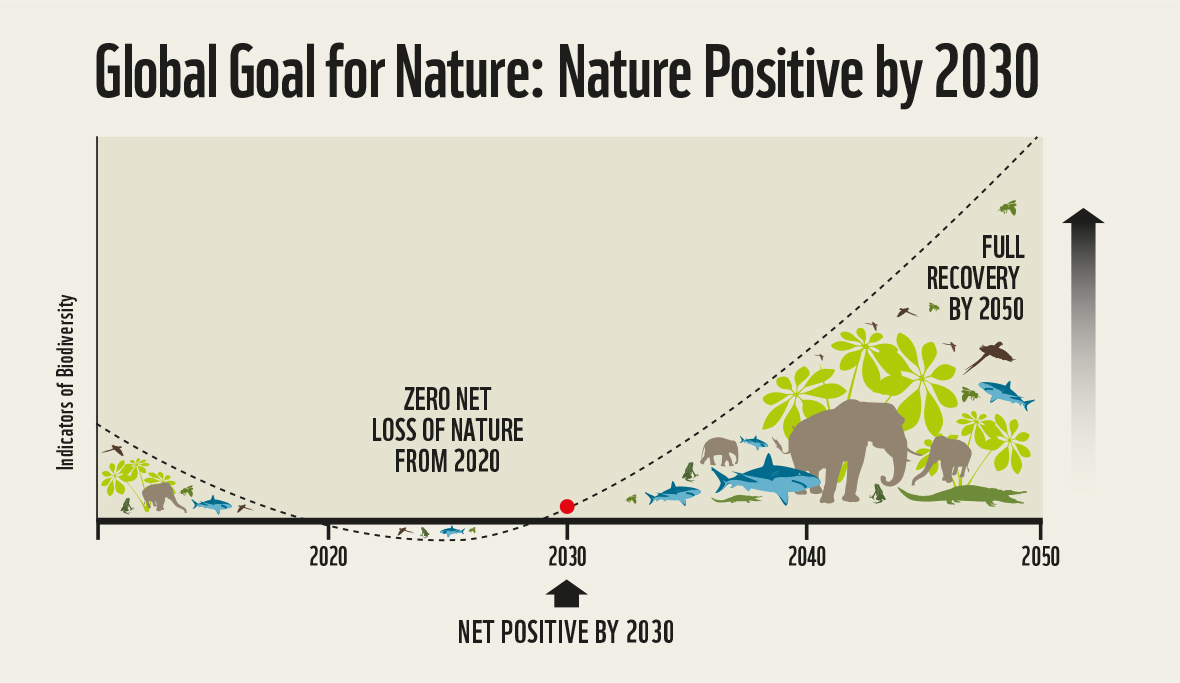 Excellent paper: #NaturePositive World by 2030!  Zero Carbon 2050 & stabilizing Biodiversity during the next decade are intertwined goals. Biodiversity goals need to integrated systematically in NDCs https://t.co/7lovlTFqkG