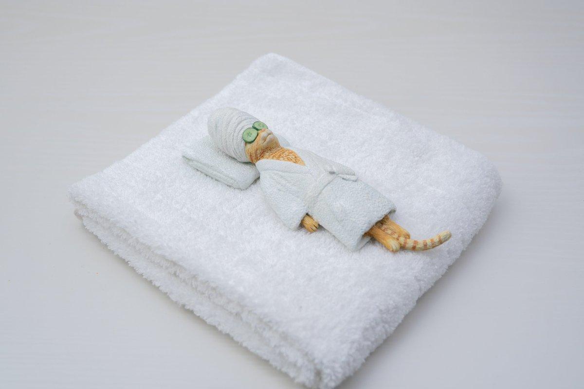 美意識が高いバスローブ姿の猫のフィギュアが可愛い!来局用のタオルに添えるのがおすすめ!