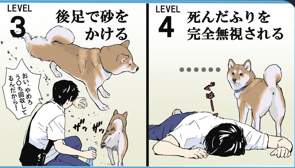 精神的ダメージは大きい!?愛犬にされたら地味にショックなこと8選!