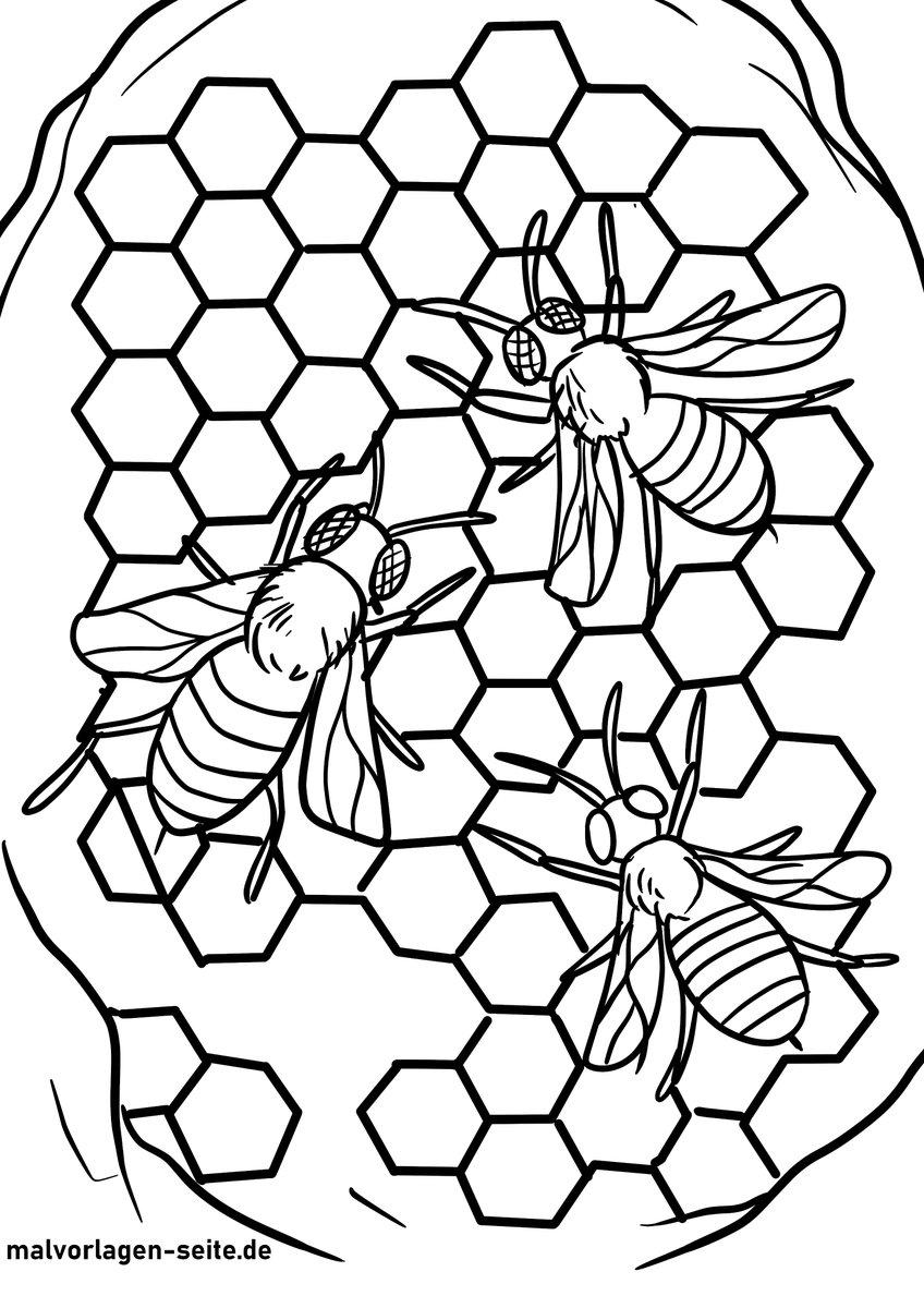 """S.B. on Twitter: """"Ausmalbilder Bienen für Kinder https://t.co"""