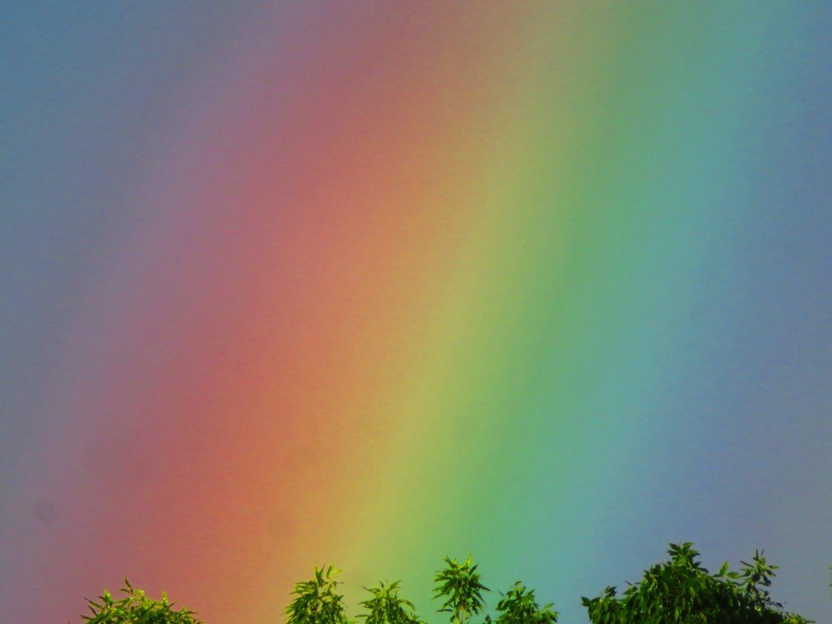 すっごい虹でてた!