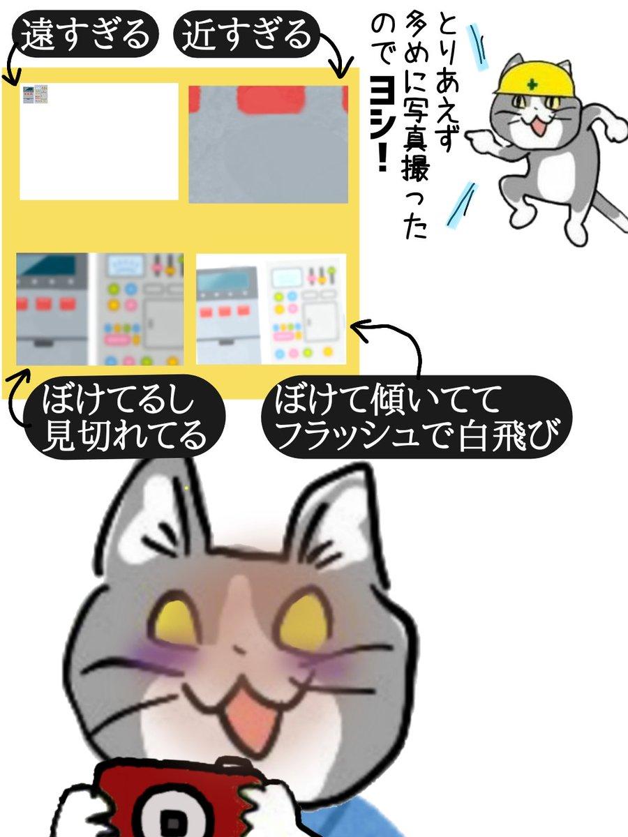 どうしてまともに使える写真がひとつも無いんですか?! #現場猫