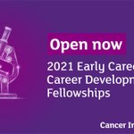Image for the Tweet beginning: 2021 Early Career Fellowship and