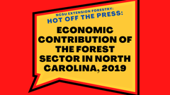 """Image of a speech bubble with the words, """"NCSU Extension Forestry: Hot off the press: Economic contribution of the forest sector in North Carolina, 2019."""""""