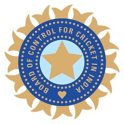 Indias cricket league postpones season indefinitely as COVID crisis worsens Photo