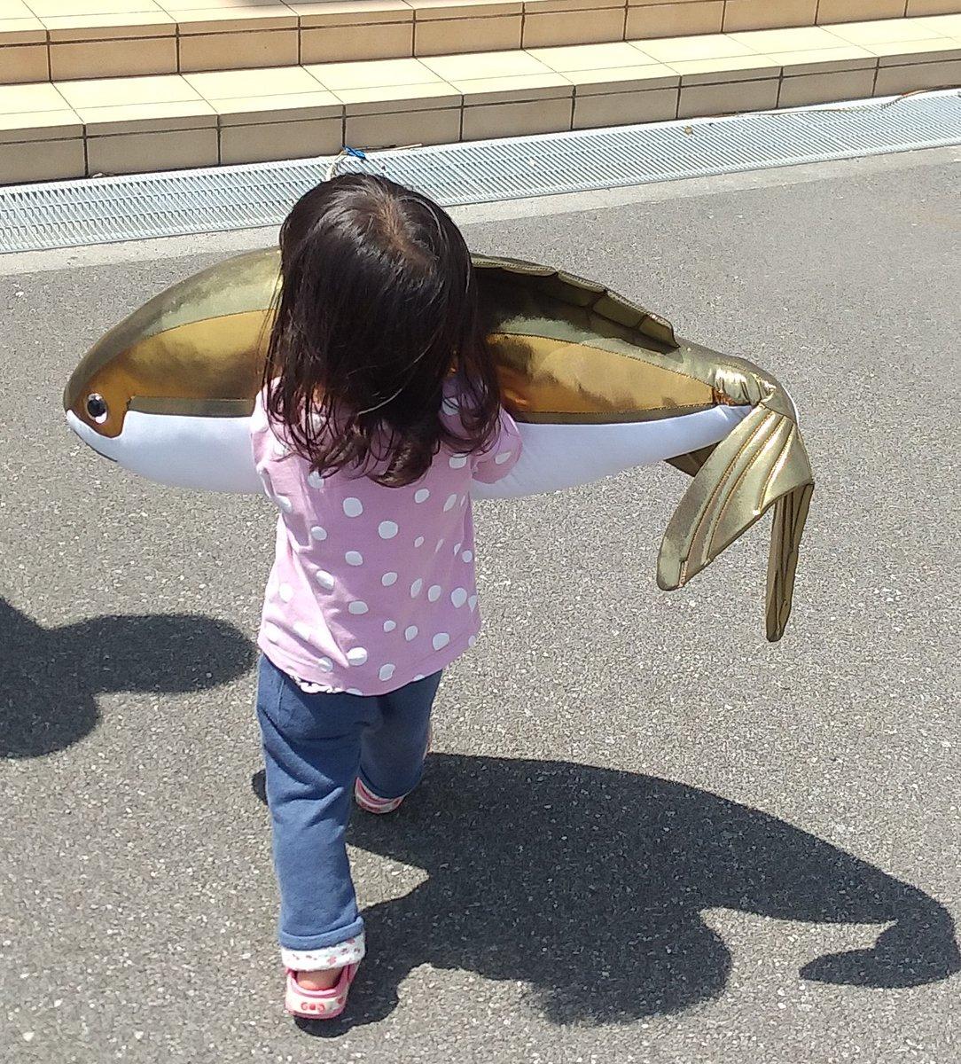 むろと廃校水族館さんの投稿画像