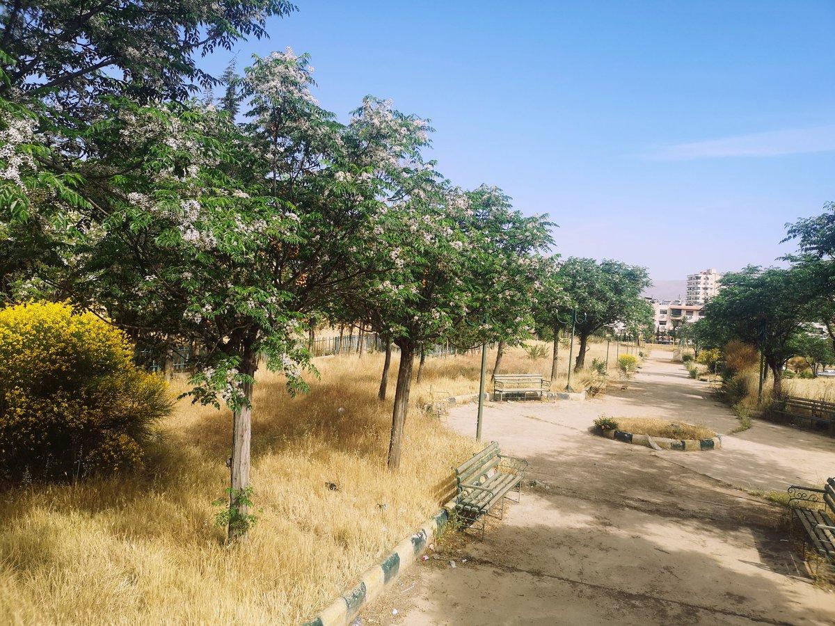My early morning walk in #Damascus #Syria https://t.co/shHDkijXEU