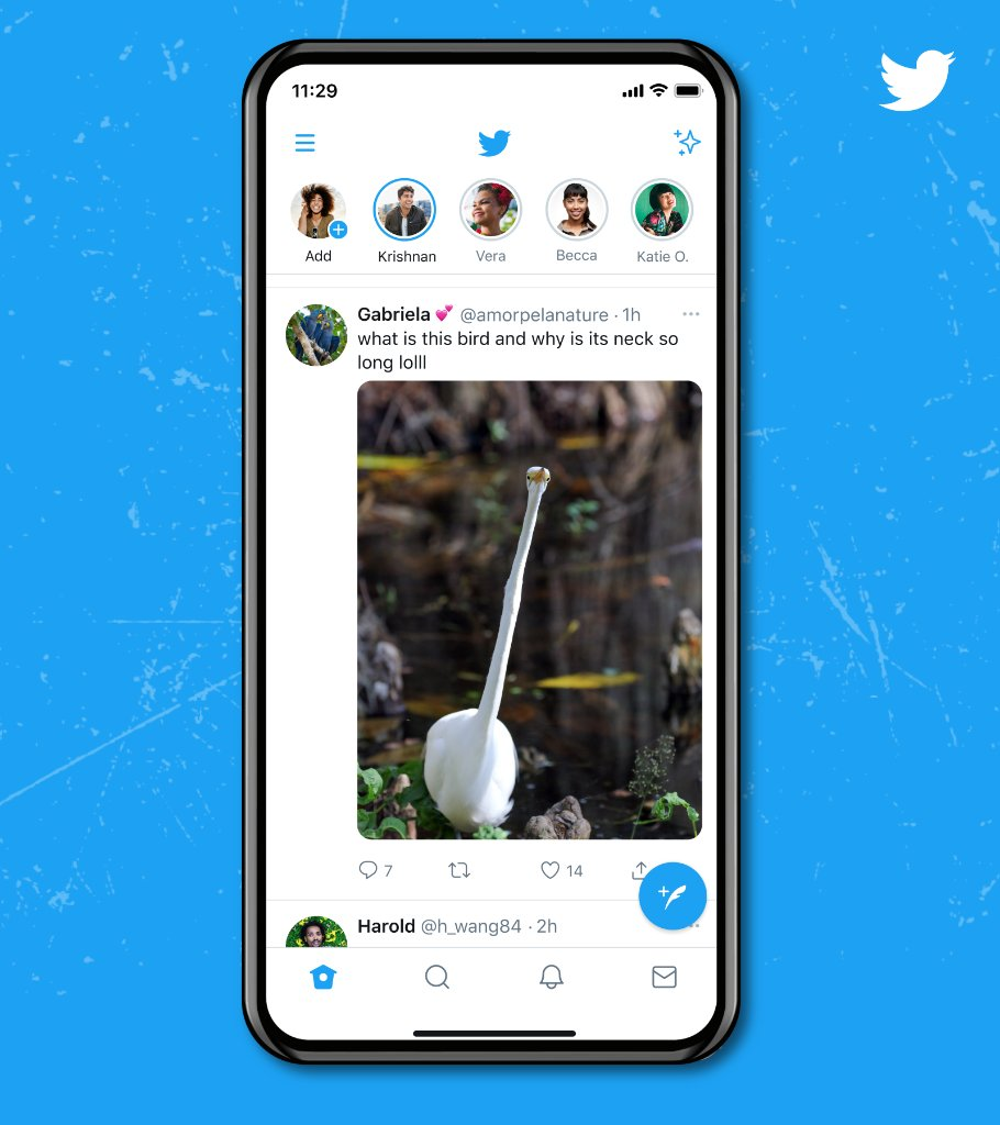 A timeline that shows the same Tweet with a full length image of the tall bird and the same copy. Multi-image Tweets will remain the same –– this change is only for Tweets that include one image with a standard aspect ratio.