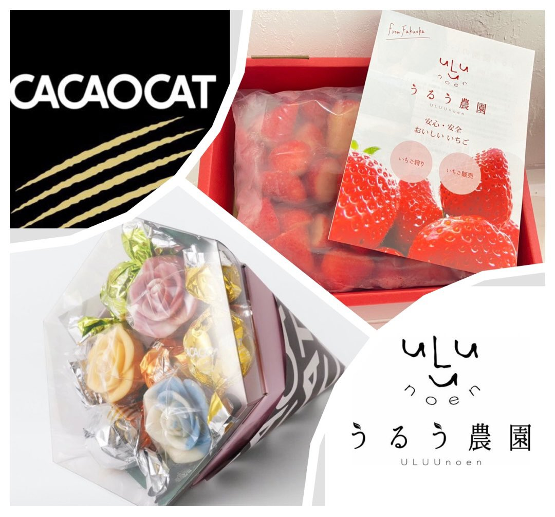 CACAOCAT / チョコレート専門店さんの投稿画像