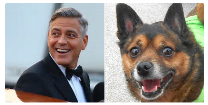Happy Birthday to that George Clooney from one silver fox to another. (I\m the one on the right.)