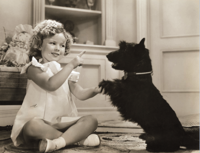 ARL has proudly supported @AmericanHumane's initiative since its beginning, spreading awareness of the importance of adopting shelter animals. Take a peek at some of our throwback photos below and remember to always be kind to animals ❤️ #ThrowBackThursday #BeKindToAnimalsWeek https://t.co/67NLHbpTRn