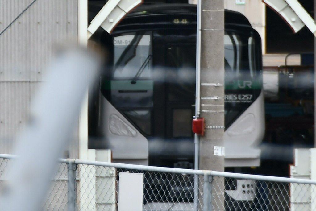 E257系5000番台OM-91編成が姿を見せる 幌受けは撤去され連結は非対応に