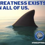 Image for the Tweet beginning: It's true!  #finsupfriday #landsharkgroup