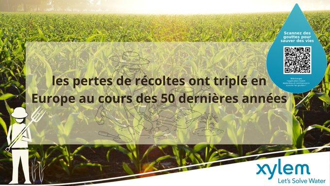 Une récente étude publiée dans la revue Environmental Research Letters montre la gravité des impacts de la sécheresse sur la production agricole. 🌾  ...