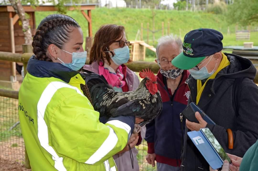 Quelques seniors lormontais de la RPA Victor Hugo sont venus découvrir le jardin intergénérationnel en cours d'aménagement à la ferme des Iris. Ils ont bénéficié d'une visite guidée de la ferme par Marie qui travaille avec les animaux. #Lormont #animaux #ferme #seniors #Gironde https://t.co/X3ciaYMsUS