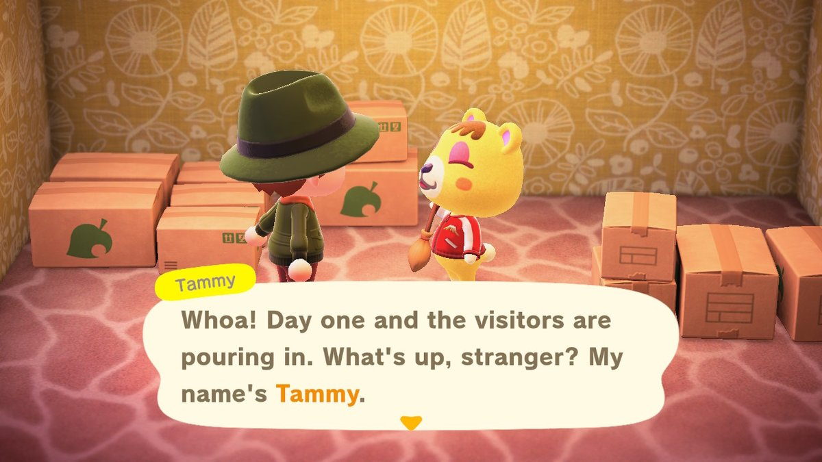Getting to know the Inverness crew! #tammy #AnimalCrossing #ACNH #NintendoSwitch