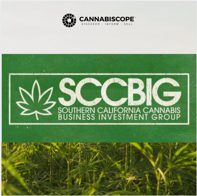 Cannabiscope: Join our CEO David Schacter on MAY 15th for the Southern California Cannabis Business Investment Group's Monthly MeetUp!   #growingindustry  #cbdindustry #meetups #growyourbusiness #cannabisindustry #SCCBIG #Investmentgroup