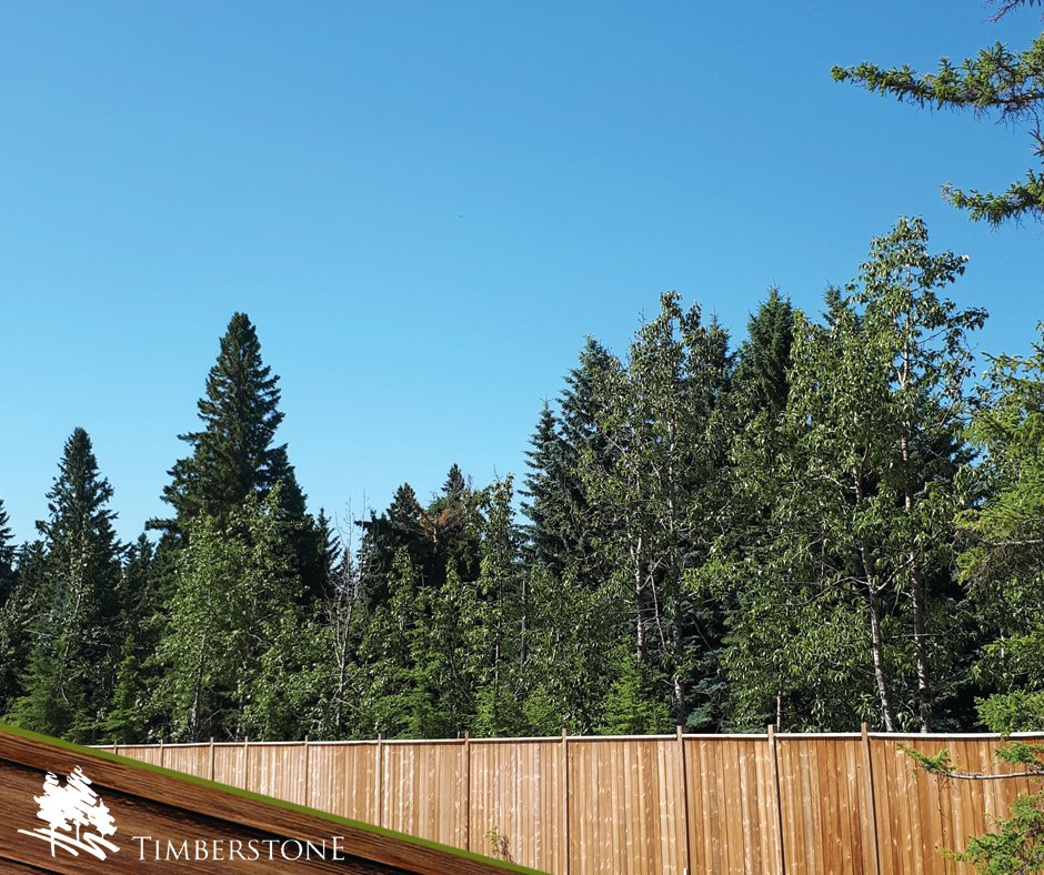 This could be the view from your back deck! #Timberstone #YouCouldLiveHere #CustomHomes #RedDeer https://t.co/OiO02mxCNj