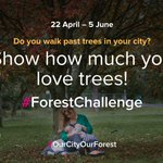 Image for the Tweet beginning: #CitiesWithNature for forests 🌳  Do you