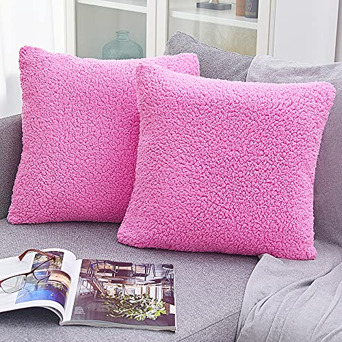 2 PAULEON Sherpa Pillow Covers PRNT