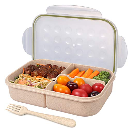 2 BENTO BOX LUNCH CONTAINERS LUNCH BOX