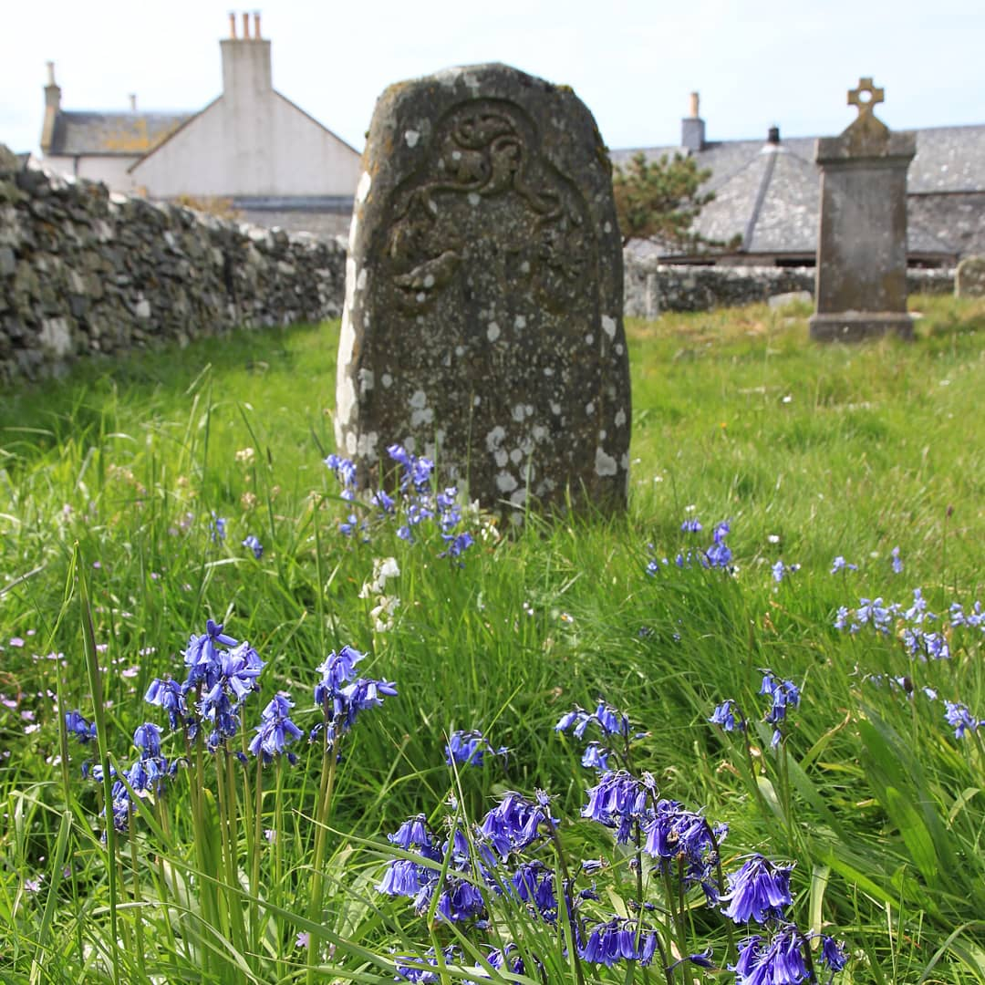 test Twitter Media - Spring Bluebells. These are Scotland. Oban, Oronsay Priory and Colonsay House. https://t.co/jvHYzET8V9
