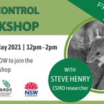 FREE EVENT to help you combat #mice  🐭 🚫   Register now for this online workshop to get expert advice and practical strategies from @CSIRO researcher Steve Henry on reducing mice numbers. Register here 👉   https://t.co/hTqO4BaFNq @nswdpi @LandcareNSW @theGRDC @MouseAlert