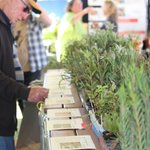 Wheatbelt NRM is looking for friends to share its mega tent again at this year's Dowerin GWN7 Machinery Field Days on August 25 & 26. https://t.co/gGlJeDMzPW
