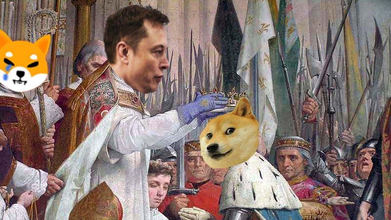 @WSBChairman's photo on Dogecoin