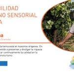 Image for the Tweet beginning: Hoy nos acompaña @JaumeGramona de