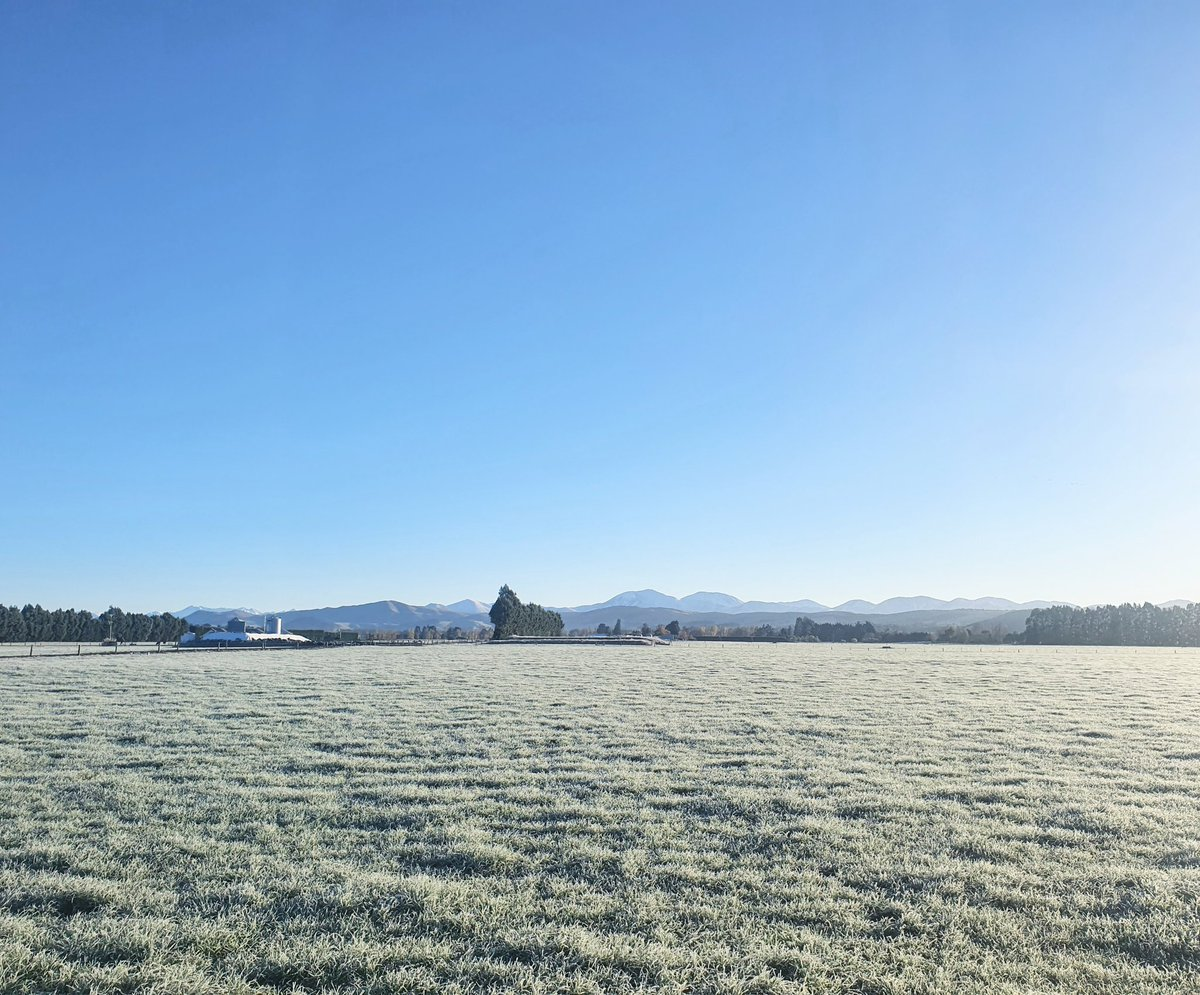 Decent frost this morning -4c in Balfour