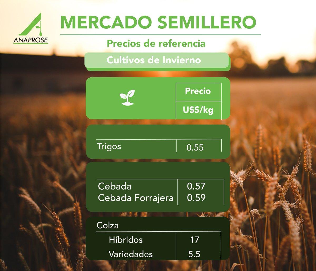 test Twitter Media - 🌱 Los invitamos a ver los precios de referencia de los cultivos de invierno en nuestra web 👇🏼 https://t.co/HXSlyiF0Yz https://t.co/o4u4qz0QmH