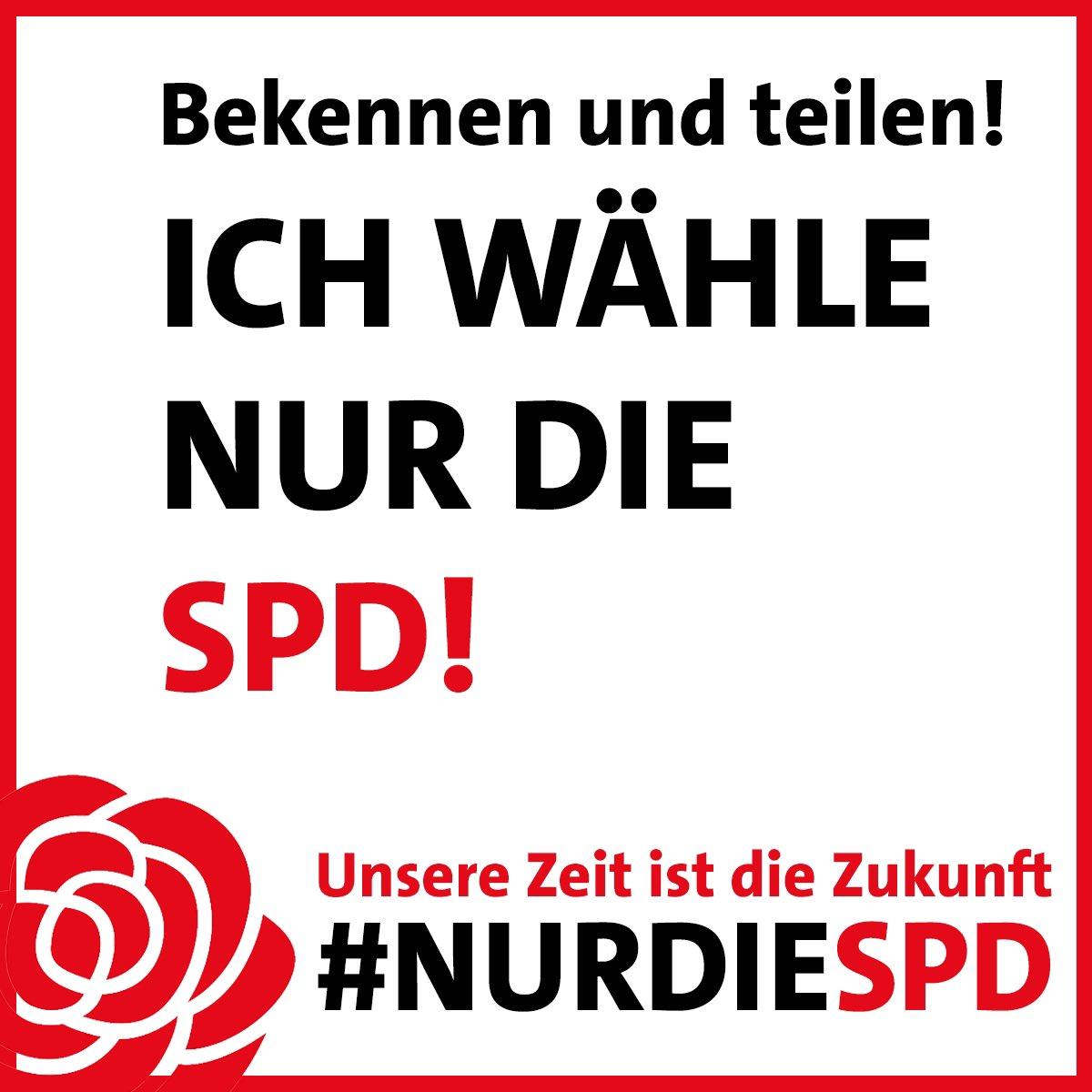 RT @nurdiespd: #P7Spezial #nurdiespd https://t.co/txEkgDpnpu