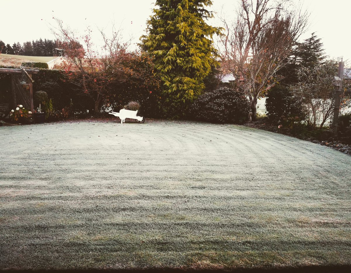 Waking up at a cousins house in Gore this morning with a cup of tea, the heating on and a good frost on the lawn. #Roadtrip #Keepexploring #Discover #Frost #WeatherWatch
