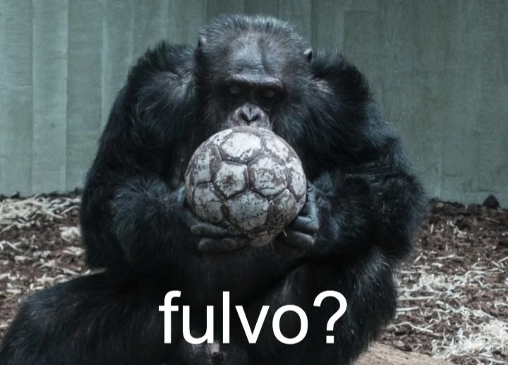 @Budin_chigurh's photo on Escobar