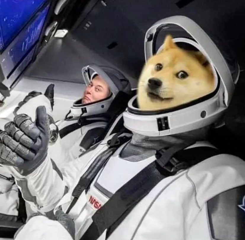 @TeslaOwnersEBay's photo on Dogecoin