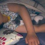 寝相なんて関係ない!好きなこと一緒に寝たい猫