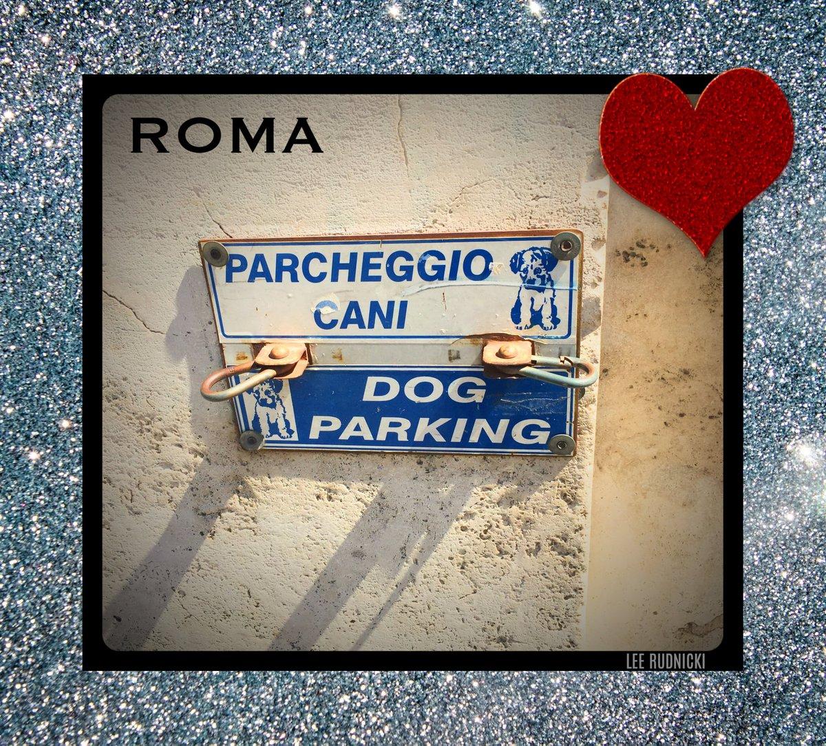Roma Dog Parking #leerudnicki #photography #rome #roma #italy #italia #travel #ig #art #love  #picoftheday #igersroma #instagood #romeitaly #photooftheday #travelphotography #lazio #europe #igersitalia #paris #like #visitrome #instagram #history #photo #follow #travelgram #dog https://t.co/NsDGHTYrdj