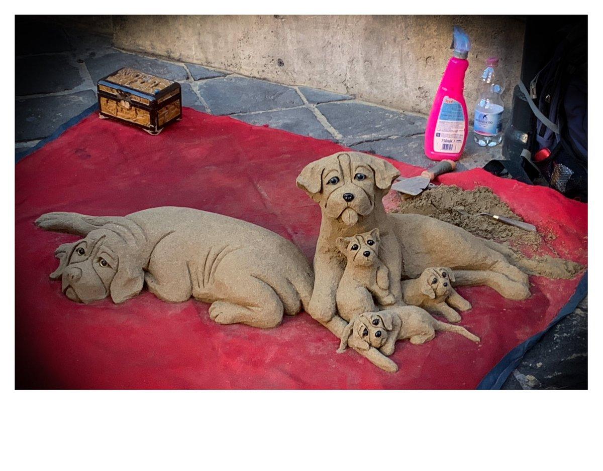 Roma Dog 5 #leerudnicki #photography #rome #roma #italy #italia #travel #ig #art #love  #picoftheday #igersroma #instagood #romeitaly #photooftheday #travelphotography #lazio #europe #igersitalia #paris #like #visitrome #instagram #history #photo #follow #travelgram #bhfyp #dog https://t.co/aLEnGJExYC