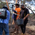 Our Rangers have been working in the field to develop their skills in collecting and processing native seeds for revegetation purposes. Now they have tackled some classroom learning to turn on the job training into formal skills and knowledge. https://t.co/IlAs2DVvvn