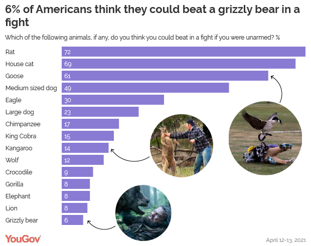 The fact that 17% of people think that they're going to do anything but get every bone in their body broken by a chimpanzee tells me not enough people watch animal planet.