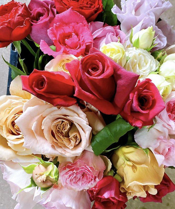 🌹無農薬バラの頒布会2021🌹  皆さまのご協力により、満員御礼となりました。ありがとうございます🌹