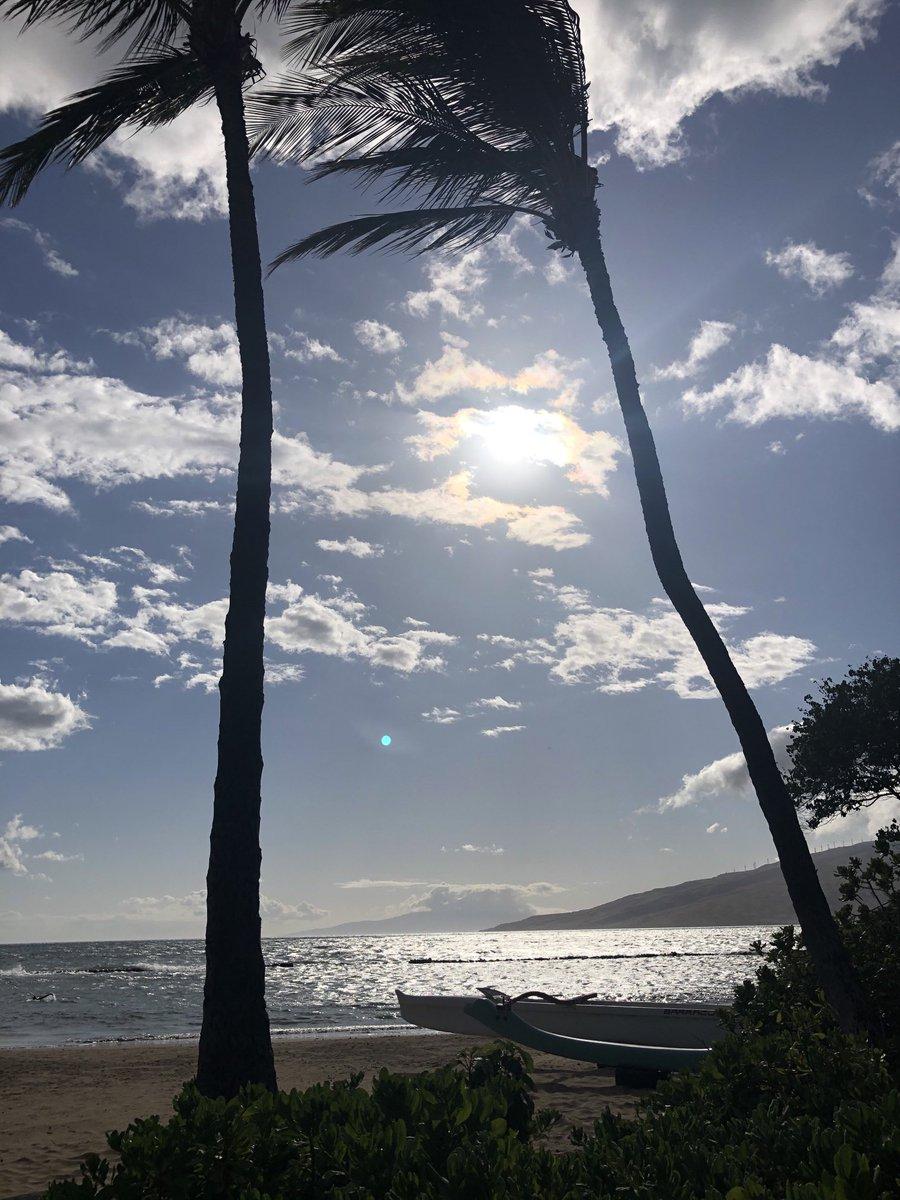 test Twitter Media - Breezy and warm in Kihei. #CMWeather #Maui #KiheiHashtagsOutside #Ocean #beach #MagicalMaui #MauiNoKaoi https://t.co/XcwaQoSBzP