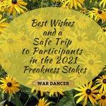 Best Wishes to All !  From the War Dancer Team  @wardancerstud @preaknessstakes #sugarplumfarmsaratoga
