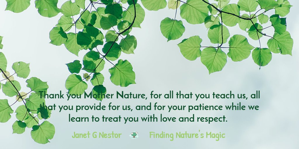 Thank you Mother Nature #IAMChoosingLove #LUTL #LoveMatters #Nature #FindingNaturesMagic #EveryDayIsEarthDay