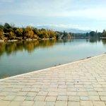 Image for the Tweet beginning: los bosques de Palermo versión
